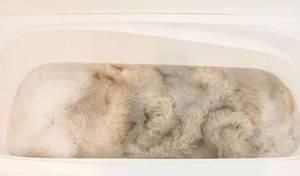 Способы стирки овечьей шкуры