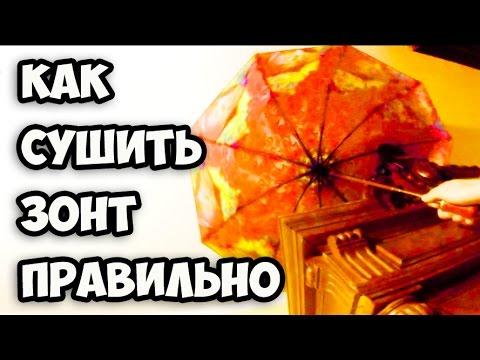В каком виде правильно сушить зонт после дождя и как его почистить