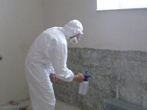 Плесень в погребе: как избавиться? Как удалить сырость и грибок под домом